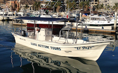 Boat private tours in cabo