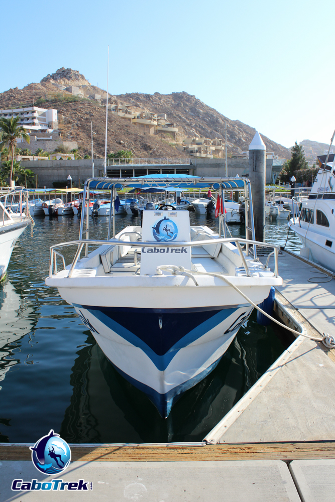 Cabo Trek Boat-8