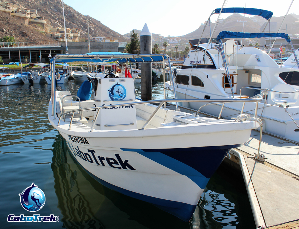 Cabo Trek Boat-9
