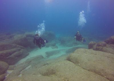 divers in corridor cabo san lucas