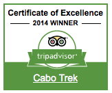 TripAdvisor certificate excellence 2014