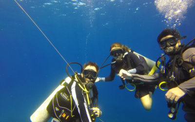 A beginner diver experience in Cabo San Lucas