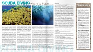 Main article destino magazine