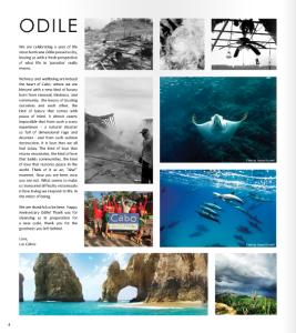 Pictures destino magazine