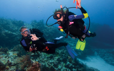 The Best Way to Refresh Your Diving Certification