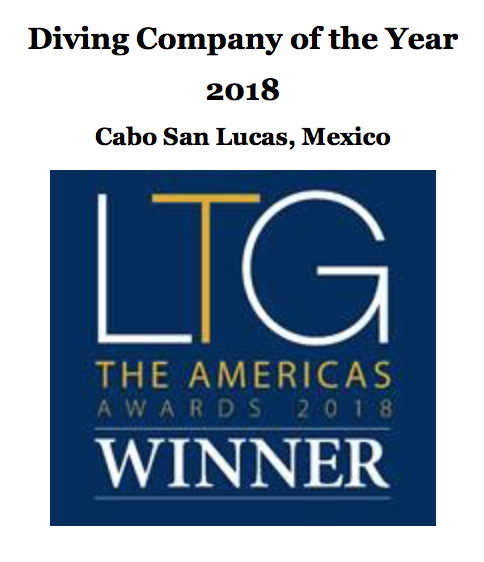 best diving in cabo