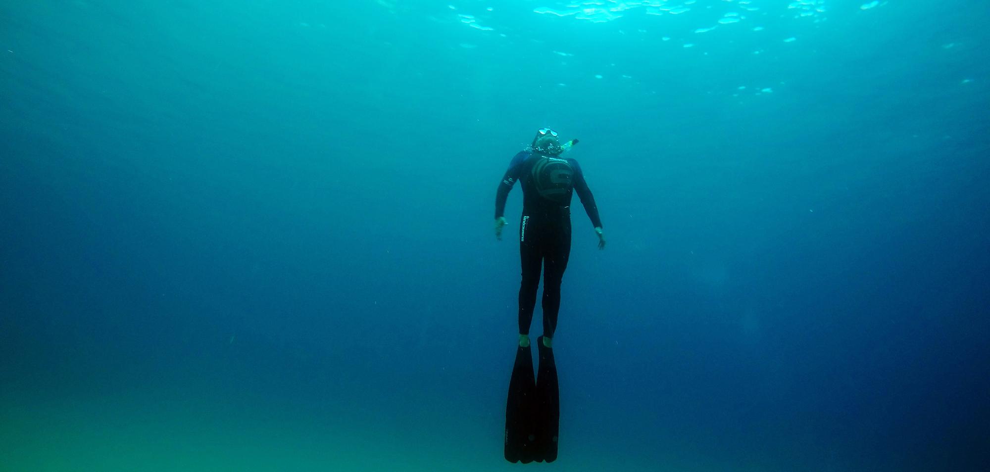freediving cabo san lucas