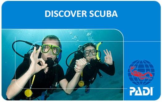 Cabo Discover Scuba Diving