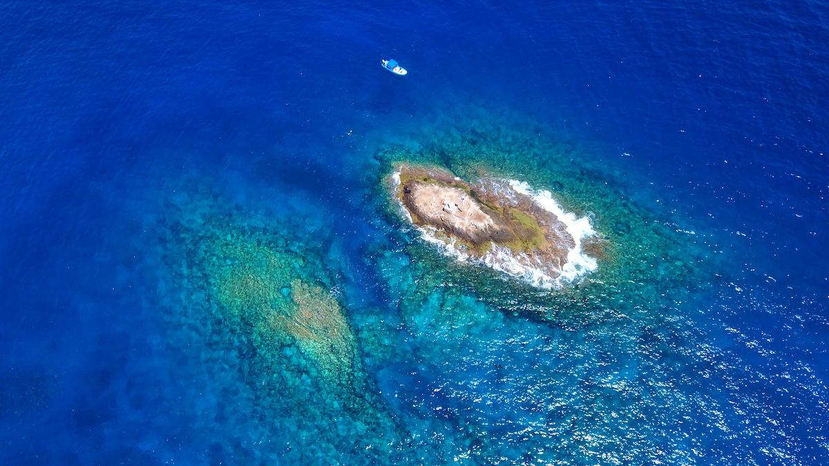 Cerralvo Island - La Reina | Cabo Dive Trek
